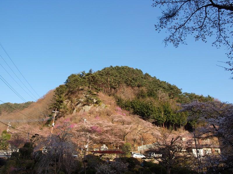 お城部ログ ~日本のお城を攻めるお城部のブログ~-要害山城