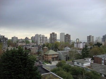 dahliaのブログ-Apr 15'10 カナダリア