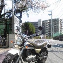 2010/04/16