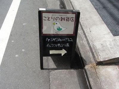 【たんぽぽの惑星】-たんぽぽ041810