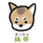 伊賀忍者柴犬 抹茶