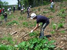 100万人のポケダネ運営事務局のブログ-植栽作業