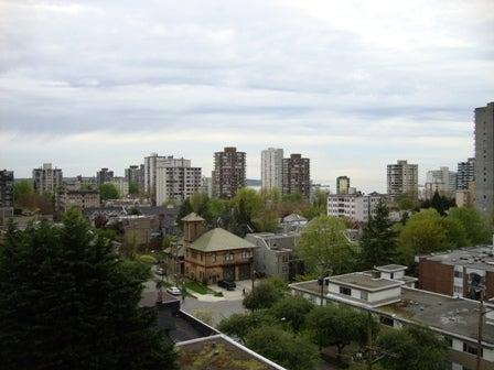 dahliaのブログ-Apr 19'10 カナダリア