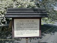 ガーデンデザイン日記