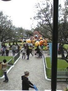 香山の散歩道-100424_0842~01001.jpg