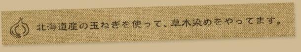 北海道産の玉ねぎで草木染めをやってます