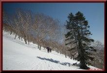 ロフトで綴る山と山スキー-0425_1431
