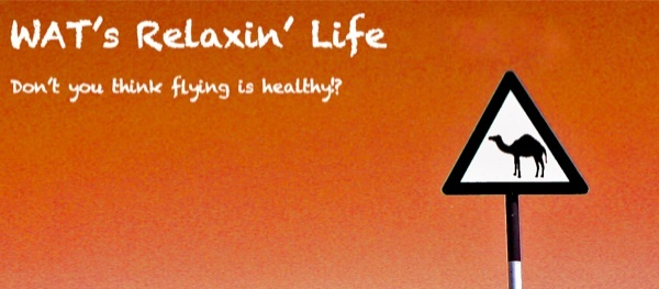 ☆☆WAT's RELAXIN' LIFE☆☆ **flying is healthy!?**