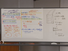 $チームビルディングジャパン・スタッフサークル-FT01-1