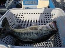 奥琵琶湖ファイブオーシャンマリーナ                                  オフィシャルブログ