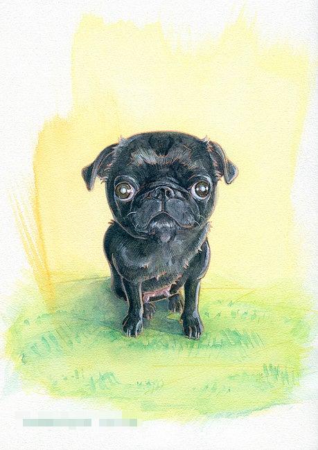 黒パグのイラスト 犬と絵