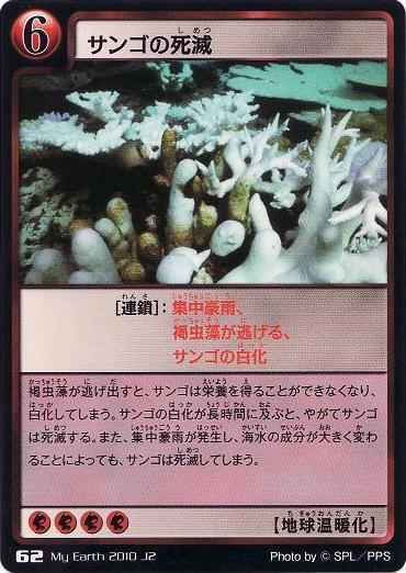 62 サンゴの死滅 | マイアース研究所&ワンダー・ライヴズ研究所