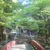 花園山の画像