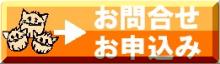 安心♪安全♪のSSL通信機能付き!!行政書士花田事務所お問合せ・お申込フォーム♪