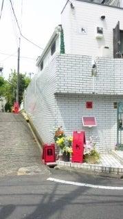 犬の美容室 Dog Beauty Parlor K  (杉並区)       プライベートルーム・トリミングサロン