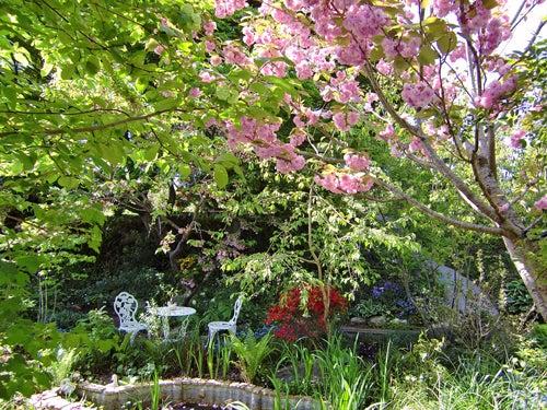 夢色の庭と暮らす