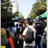 高知旅行~日曜市&高知城~の画像