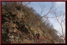 ロフトで綴る山と山スキー-0508_1327