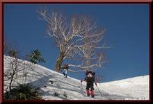 ロフトで綴る山と山スキー-0508_0830