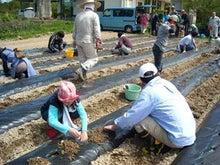福島県在住ライターが綴る あんなこと こんなこと-農学校100509-3