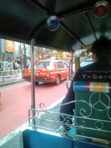 ひまわりのネタ-F1130111.jpg