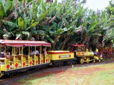 $楽園ハワイ通信 by Lani Tours-パイナップル電車
