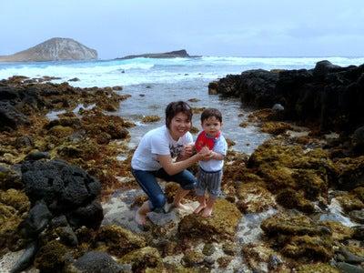 $楽園ハワイ通信 by Lani Tours-ヒーリングプール