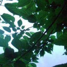 三浦の豊かな自然を守…