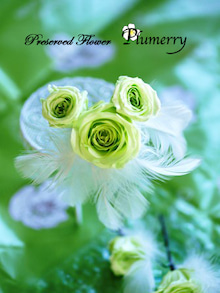 Plumerry(プルメリー)プリザーブドフラワースクール (千葉・浦安校)-ウエディング ブーケ 手作り プリ