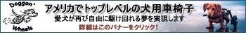 愛犬介護のお手伝い by M.E. Maxx-犬用車椅子バナー