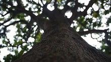 「府内★学生Ecoフェスタ」公式ブログ