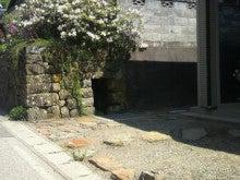 ゆきちゃんのつぶやき日記-水路2