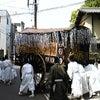 葵祭り 2010年の画像