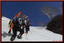 ロフトで綴る山と山スキー-0515_ゆきむし1