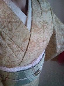 目指せはんなりKIMONO道      リサイクル着物 『姫乃屋~himenoya~』-100519_1638~01.jpg