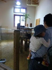 転勤族新米ママ ~長野・松本生活日記~  -100516_105038.jpg