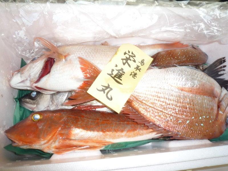 $高橋典子のブログ-魚1