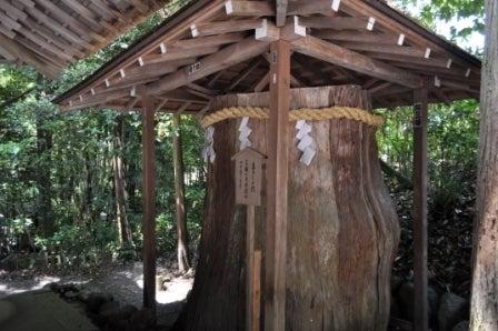 茶々吉とデジ一 のんびり旅-2010/5/21大神神社杉株