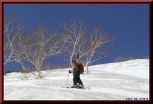 ロフトで綴る山と山スキー-100515_1010