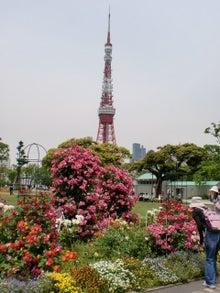 早期リタイア生活(準備編)-tower