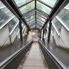 箱根、最後はここっ。5月24日 その5の画像