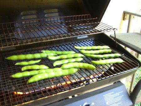 Campbell, CA ~ベイエリアでの暮らし~-BBQグリルで焼いて・・・その1