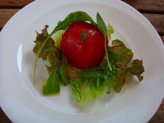 旅犬Lanileaのほほん風船記-Celeb de Tomato