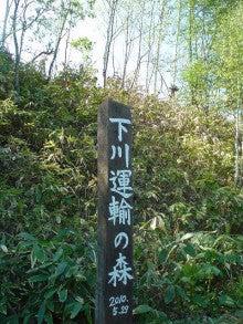 はるころ日記~田舎を駆ける女たち~-下川運輸の森