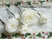 Plumerry(プルメリー)プリザーブドフラワースクール (千葉・浦安校)-ブートニア プリザブドフラワー