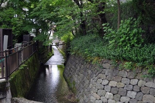 茶々吉とデジ一 のんびり旅-2010/5/30金沢疏水