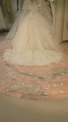 ひろぷろぐ,婚礼,司会,マナー研修,ブライダルプロデュース,人材育成-201005291740001.jpg