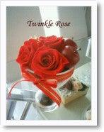 $Twinkle Diary -j