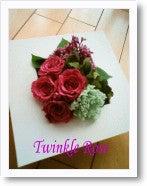 $Twinkle Diary -jj