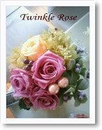$Twinkle Diary -ddd